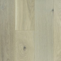 White Oak Nautilus