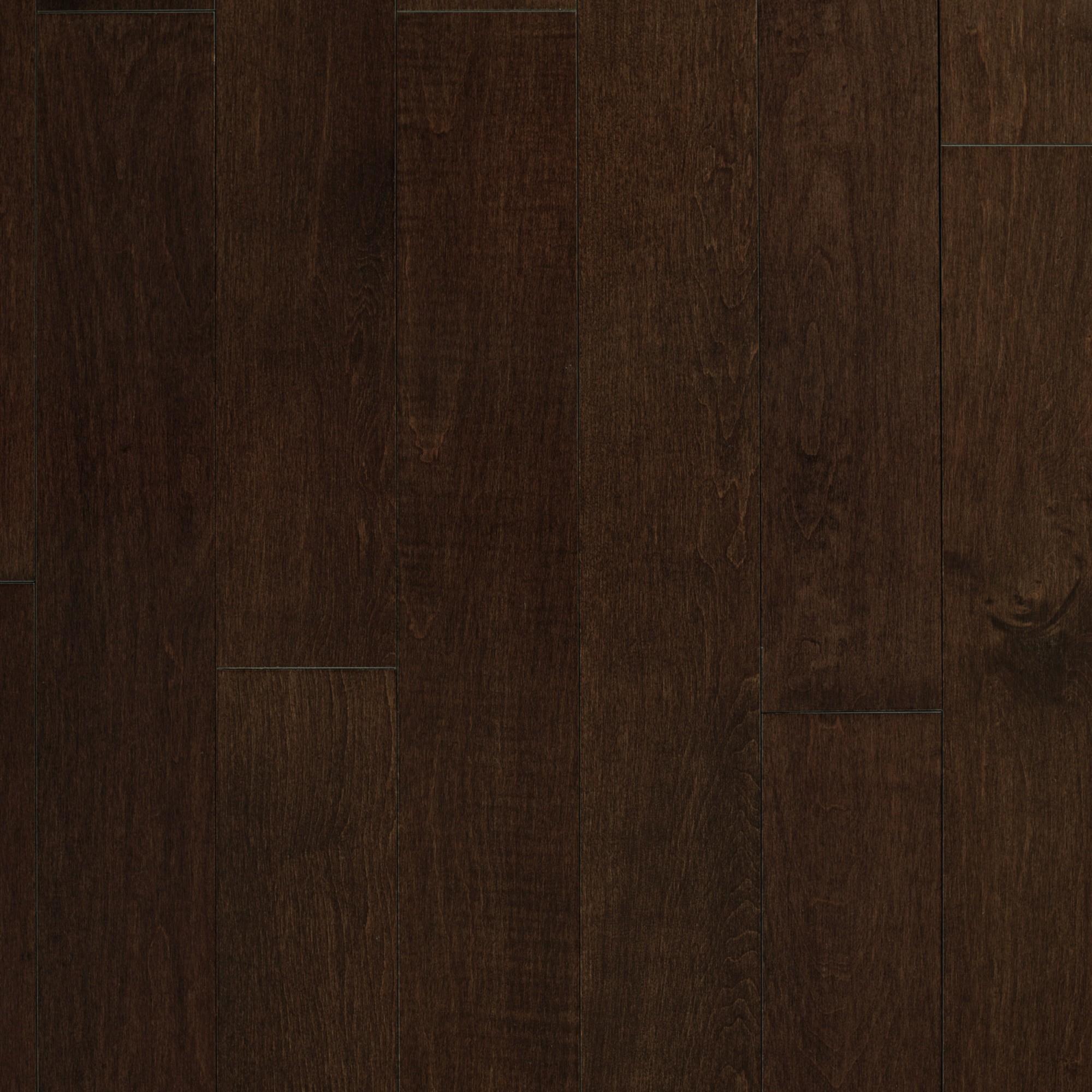 Maple Rembrandt