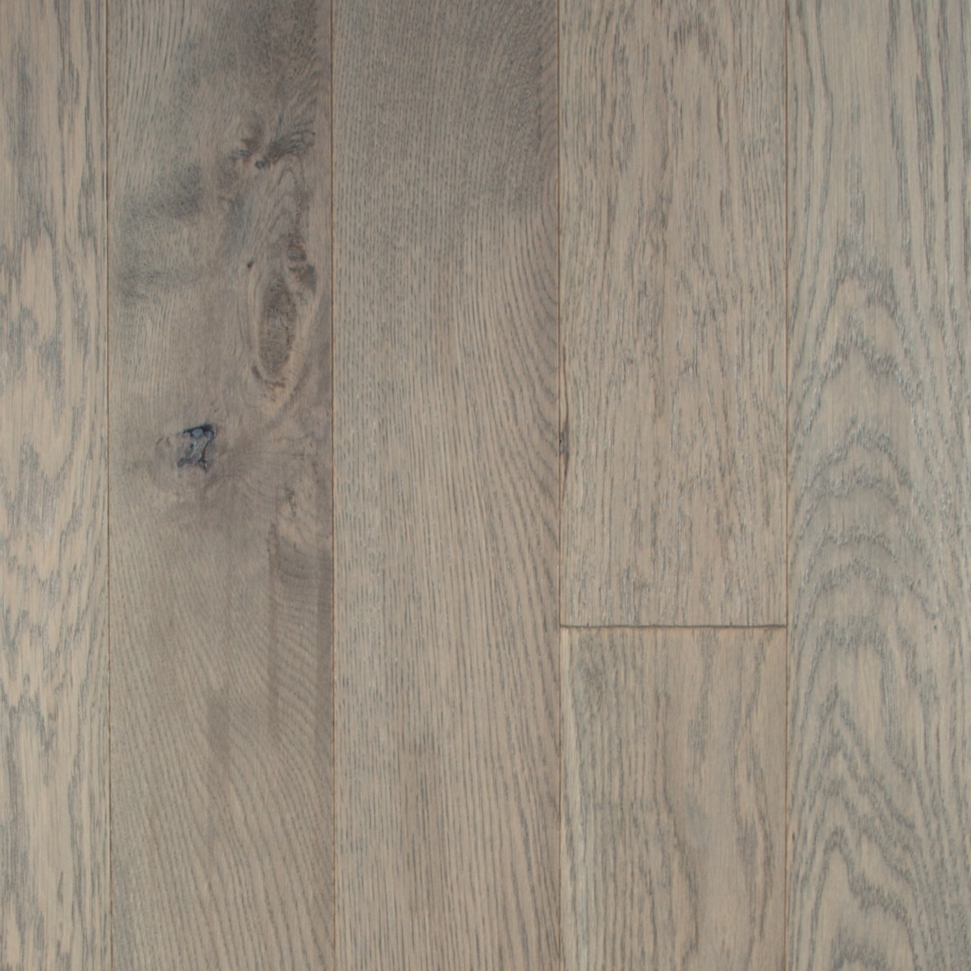White Oak Apollo